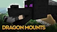 Dragon Mounts - Mods