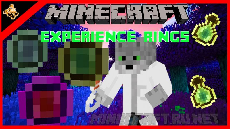Minecraft Experience Rings