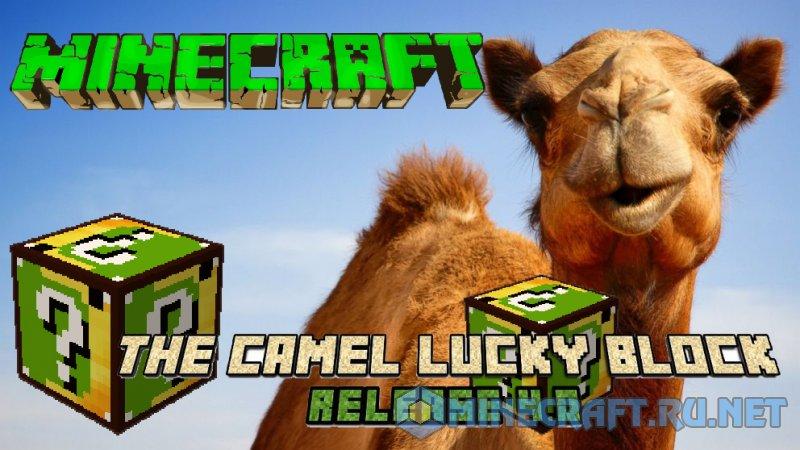 Minecraft Lucky Block Camel