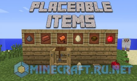 Minecraft Placeable Items